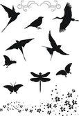 Birds design elements — Stock Vector