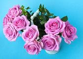 Rose rosa — Foto Stock