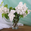 White lilac — Stock Photo #41547863