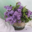 purple lilac  — Stock Photo #41667005