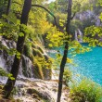 Plitvice lakes — Stock Photo #51216571