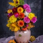 Autumn chrysanthemum flowers — Stock Photo #51347193