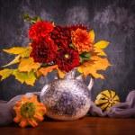 Autumn chrysanthemum flowers — Stock Photo #51347199