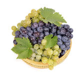 Black and white grapes — Stock Photo