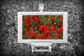 Frame on a tripod with full poppies color canvas — Stock Photo