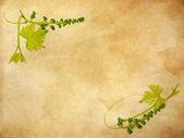 Grunge floral achtergrond — Stockfoto