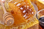 Fresh honeycombs — Stock fotografie