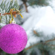 Stock Photo: Snowy fir tree and decoration