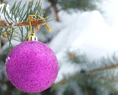 Snowy fir tree and decoration — 图库照片