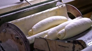 Loaves bread — Stock Video