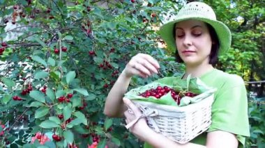 Young woman in a cherry orchard — Stock Video