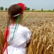 Girl in field of wheat — Stock Video