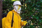Man in a protective suit spraying plants against pests, photography — Stock Photo