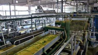 Factory for processing vegetables — Stock Video