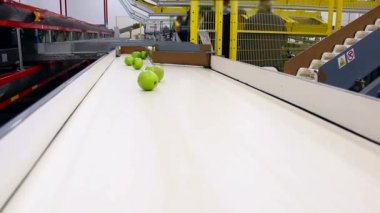 Apples in a production — Vídeo de stock