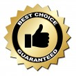 Best choice guaranteed label — Stock Vector #11495525