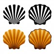 sea shells — Stock Vector