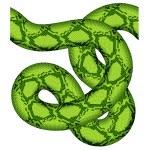 Постер, плакат: Green snake seamless