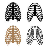 Human rib cage symbols — Stock Vector