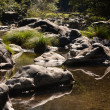 Stock Photo: Serene River Runs Through Grassy Boulders And Rocks