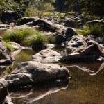Serene River Runs Through Grassy Boulders And Rocks — Stock Photo