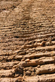 Tire Tread Marks In Dried Mud — Stock Photo