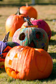 Painted And Carved Pumpkins Dry In The Autumn Sun — Stock Photo