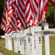 Crosses With Names Of Fallen Soldiers Commemorate Memorial Day — Stock Photo