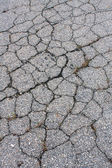 Asphalt Is Cracked Like Jigsaw Puzzle Pieces — Stock Photo