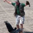 Stock Photo: Trainer Performs Bird Show With Vulture