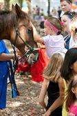 Dziecko zwierzęta koń festiwalu przyrody — Zdjęcie stockowe