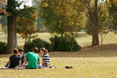 Young Adults Sit On Blanket And Talk In Park — Stock Photo