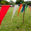 Colorful Pennants Line Field At Spring Festival — Stock Photo #26221851