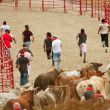 Stock Photo: Young Men Run Ahead Of Stampeding Bulls At GeorgiEvent