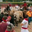 Several People Run With The Bulls At Georgia Event — Stock Photo
