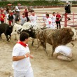 Man Crumples And Gets Trampled Running With The Bulls — Stock Photo