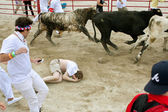 Man Trampled Running With Bulls Lies In Fetal Position — Stock Photo