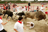 Steer Leaps Over Man Trampled In Georgia Bull Run — Stock Photo