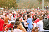 Crowd Throws Tomatoes In Massive Outdoor Food Fight — Stock Photo