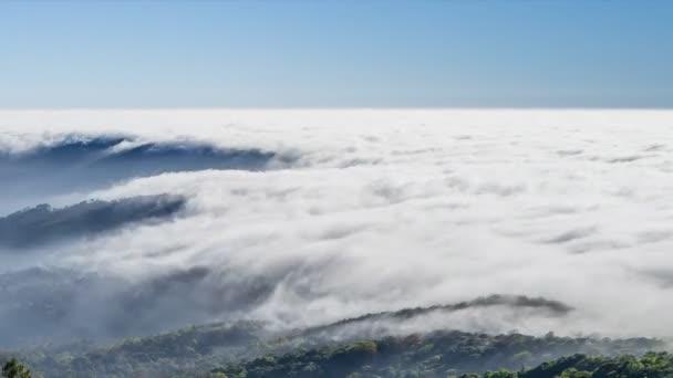 lapso de tiempo hermosa niebla fluyendo sobre valle u vdeos de stock