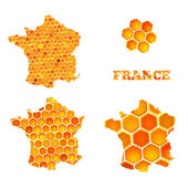 Set of map icons of France with honey cells — Stock Vector