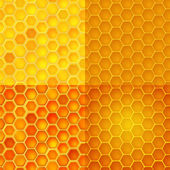 Seamless vector pattern with honey cells, combs — Stock Vector