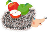 Hedgehog with apple — Stock Vector