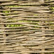 Fence of woven from branches — Stock Photo