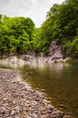 The nice river — Stock Photo