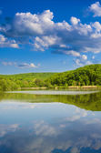 The lake — Stock Photo