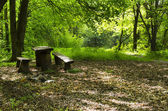 Table in the wilderness — Stockfoto