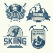 Set of nordic skiing and mountaineering badges — Stock Vector