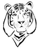 White tiger head — Stock Vector