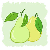 Two pears — Stock Vector